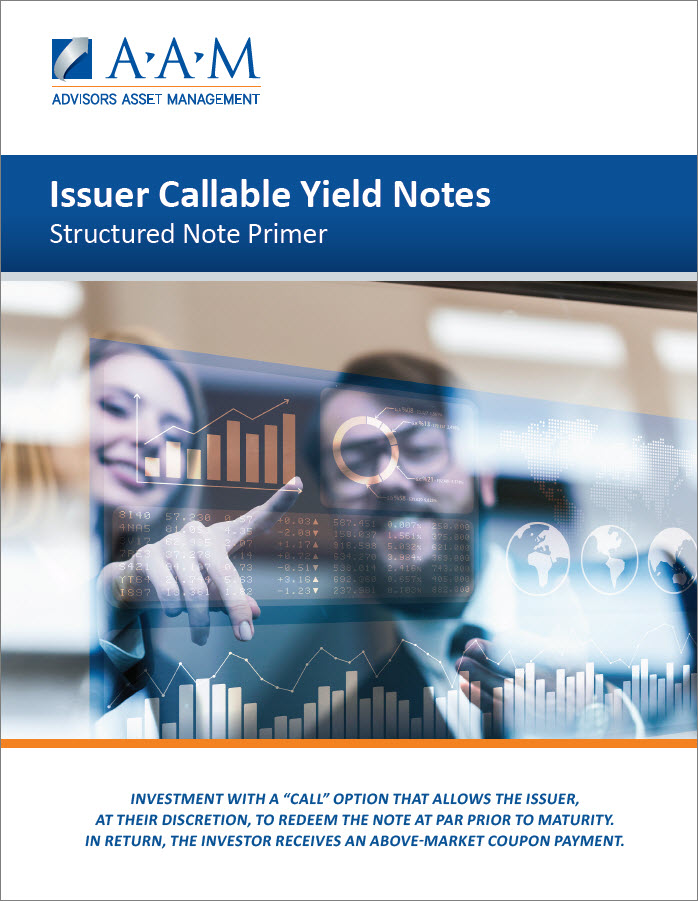 Issuer CYN Brochure